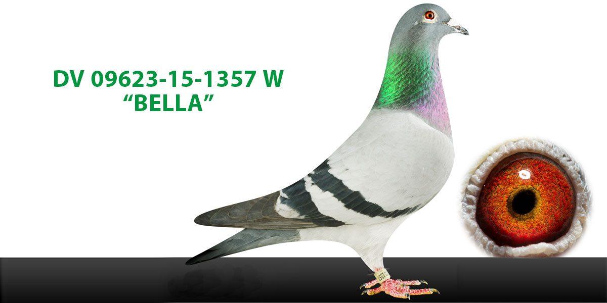 3. Platz in der Kategorie D, Allround (11 Preise): Bella